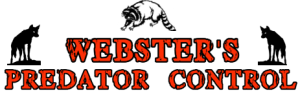 logo with coon
